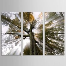3 pieces Big living room home decor Wall Art Picture printed Sky Clouds tree Painting on Canvas art(China)