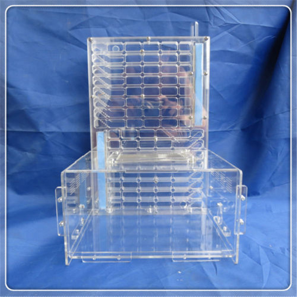 T Edition Acrylic Big Ants Nest Ant Moisture with Feeding Area Double Water Tower Farm Ant Nest Insect Cages