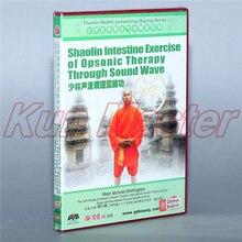 Shaolin сохранение здоровья Qigong диск английский Subtitle 1 DVD Shaolin Intestine Упражнение Opsonic терапия через звуковую волну