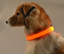 Nylon Night Safety Flashing In The Dark Dog Collar