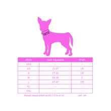 Rhinestone Puppy Personalized  Collar