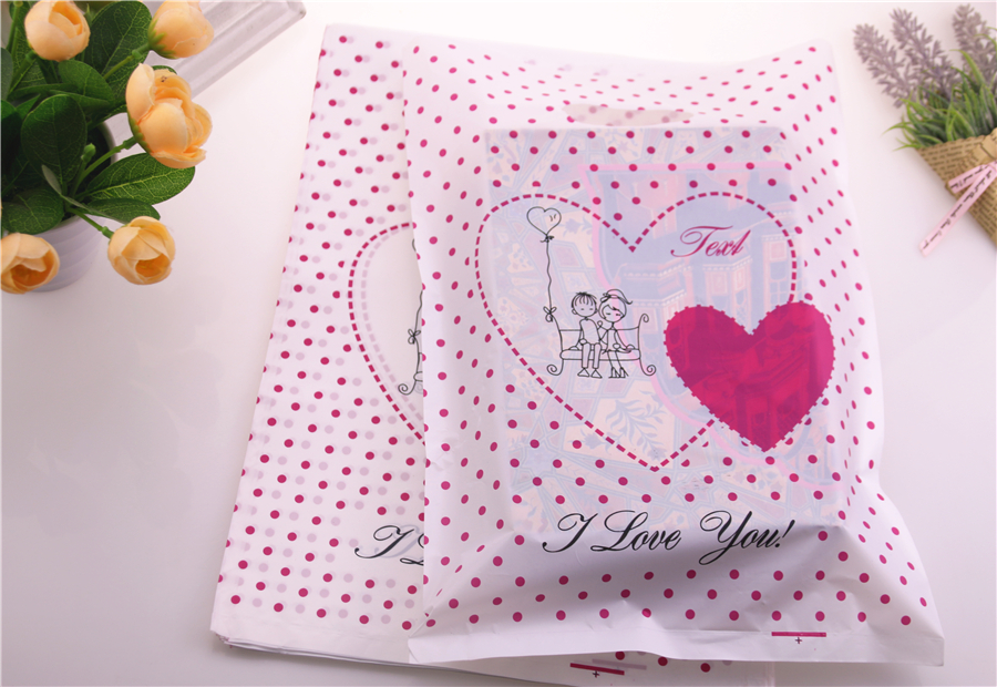 Large gift bags (6)