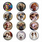 Fashion dog art 12pc...