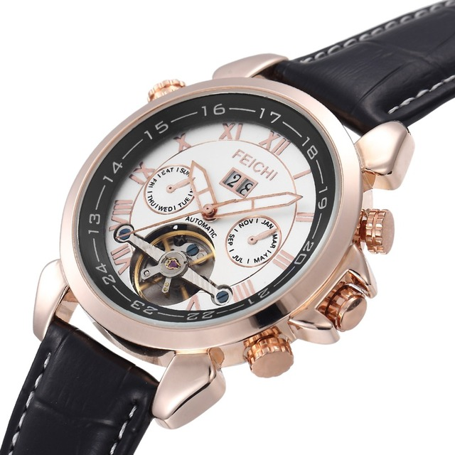 FEICHI Men's Stainless Steel Mechanical Hand Wind Skeleton Sport Wrist Watch Business Wristwatches