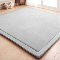 Thick 2CM Coral Fleece Velvet mat bedroom carpet thickened Baby climbed play mat living room rug large size mat