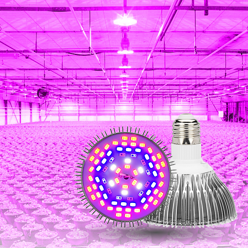 LED Full Spectrum Grow Spotlight Bulb 5W 10W 30W 50W 80W AC85-265V LED Grow Light LED Planting Lamp Phyto For Indoor Seeding