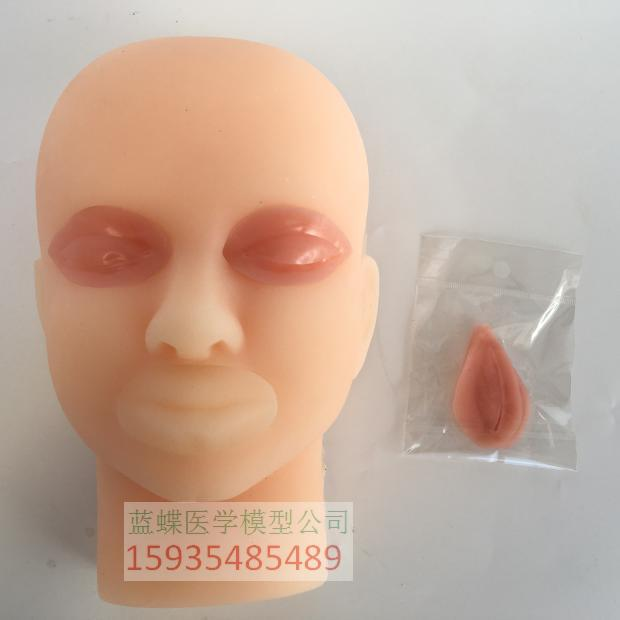 US $88 18 9% OFF|23*15*10CM silicone Double eyelid surgery training model  with skin mark pen-in Medical Science from Office & School Supplies on
