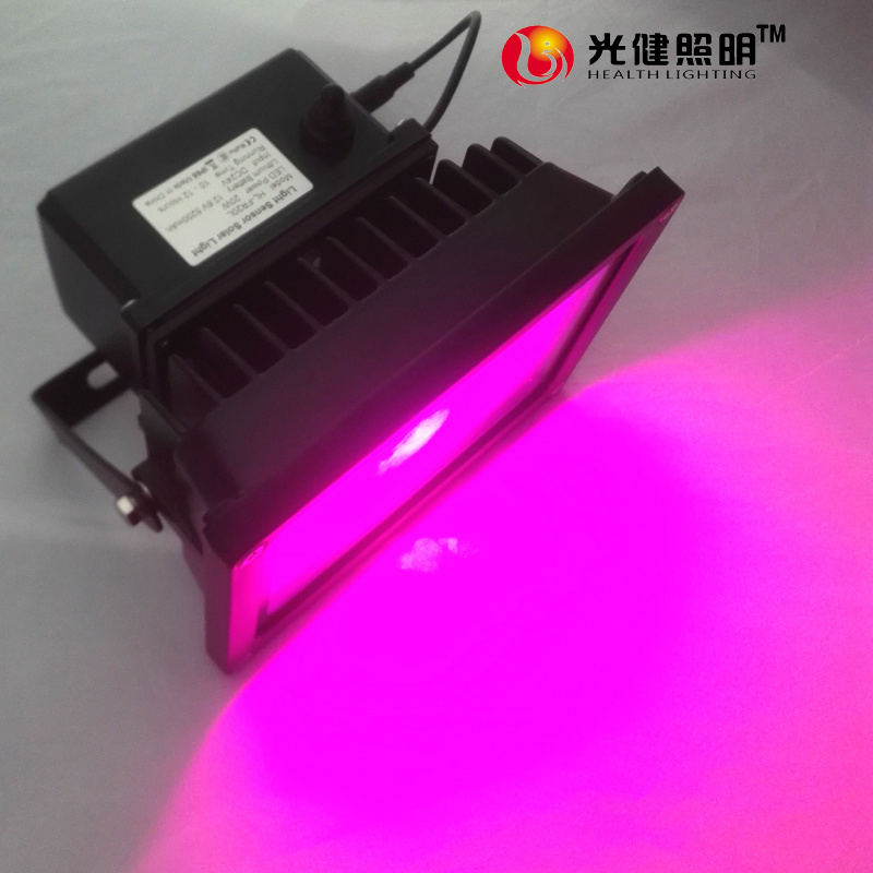 20W Solar  Led Grow Light  For Plants/Veg/Flowers Full Spectrum Plants and Flower Phrase High Yield outerdoor IP65 russian phrase book