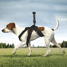 Gimbal Camera Pet Dog Chest Band Strap Holder Belt for DJI OSMO POCKET & GOPRO