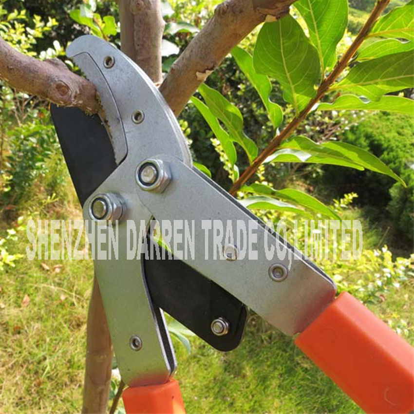 NEW HOT Rough pruning high branches pruning shears Branches of fruit ...