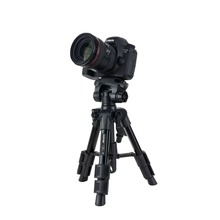 цены Zomei Lightweight Q100 CK30 Mini Travel Tabletop table tripod Desktop Tripod for Canon Nikon DSLR Camera and Mobile Phone