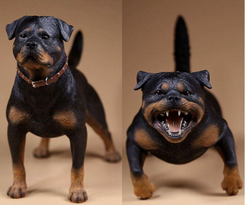 Fotos de animales de todo tipo incluyendo mascotas que más te gustan 1-6-escala-figura-de-resina-accesorios-modelo-toys-alemán-perro-font-b-rottweiler-b-font