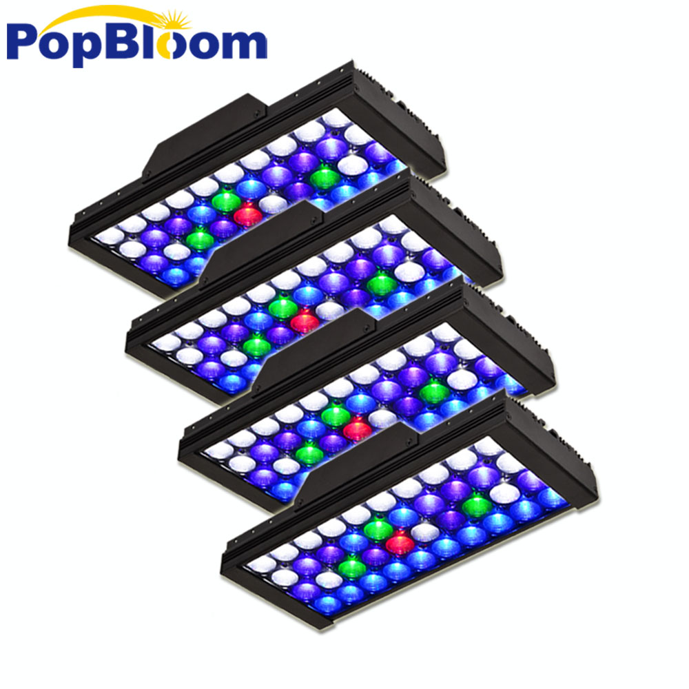 Aliexpress Com Buy Dsuny Aqua Light Dimmable Led
