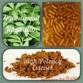 Gynostemma Pentaphyllum - Jiaogulan - 20:1 extract Capsules  TOP ADAPTOGEN - 400mg 200 Capsules