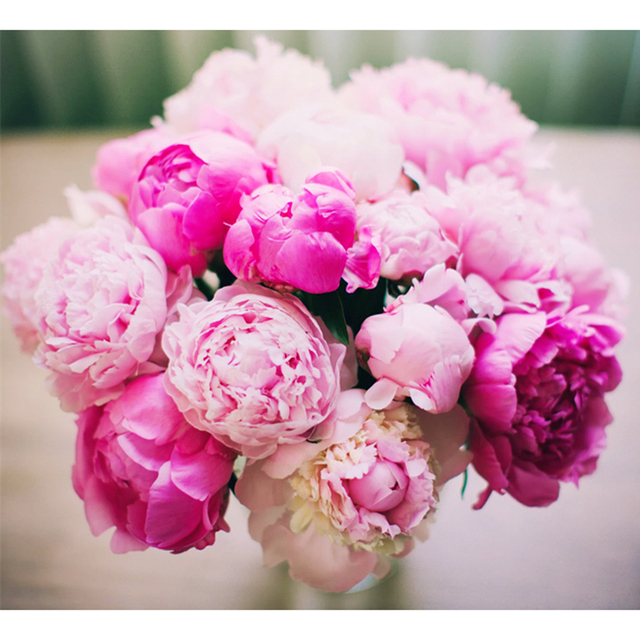 핑크 pony 꽃 홈 장식 5d diy 다이아몬드 그림 다이아몬드 모자이크 선물 크로스 스티치 전체 다이아몬드 자수 hl715