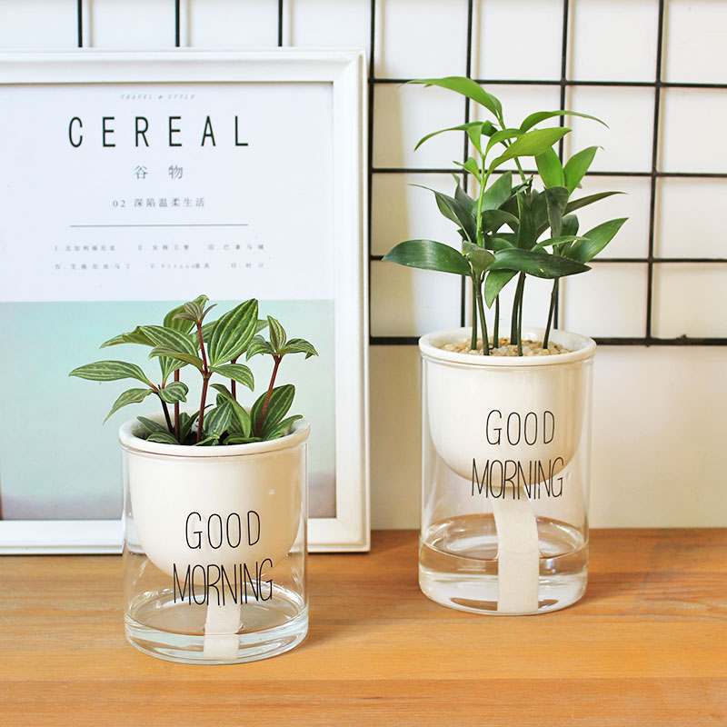 1pc Automatic Watering Planter Pot Ceramic Flowerpot with Glass Water Container for Green Plants Succulent Plant Cactus wall shelf for tea pots