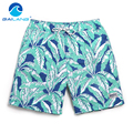 Gailang Brand Men Beach Shorts Trunks Bermuda New Mens Board Shorts Active Boxer Trunks Quick Drying Jogger Sweatpants Casual