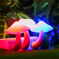 Nightlight Lámpara de Lava Para Creativos de La Novedad Led de la Inducción Eléctrica Pequeña Luz de La Noche/setas EE. UU. Enchufe de Pared Lámpara de Cabecera