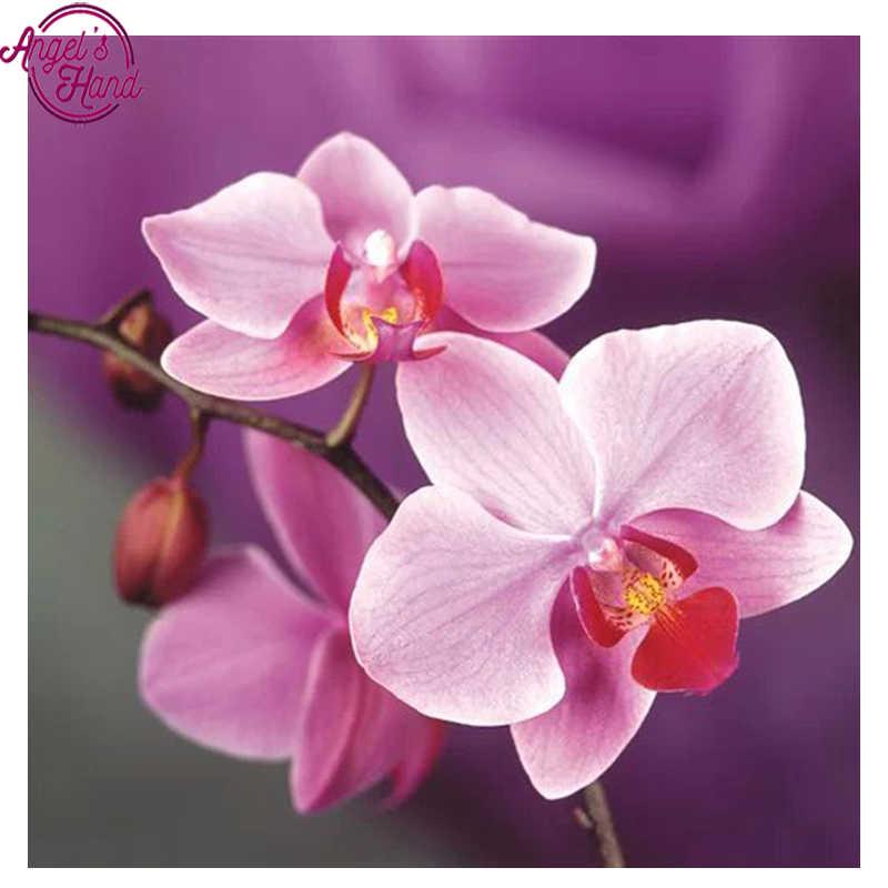 Yeni 5d elmas nakış kitleri çapraz dikiş çiçek orkide ev dekor elmas boyama mozaik diy pcitures boya İğne