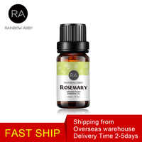 Pure Plant Rosemary Oil Aromatherapy Oil Essential Oils for Humidifier Stimulate The Circulation Relieve Headache Aroma Oil 10ml