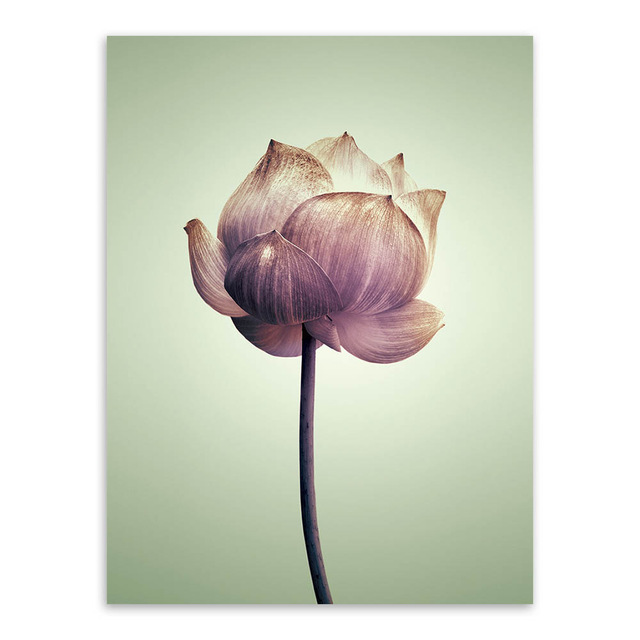 Triptych-Modern-Minimalist-Purple-Lotus-Rural-Floral-Cottage-A4-Art-Prints-Poster-Nature-Wall-Picture-Canvas.jpg_640x640 (3)