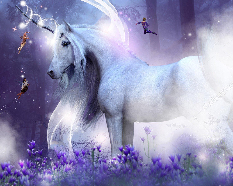 night unicorn fairies magic sparkly purple flowers enchanted fairy forest backdrop Vinyl cloth Computer print wall Background fairy unicorns the magic forest