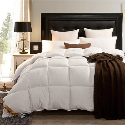 Queen Size Duvet Insert Promotion-Shop for Promotional Queen Size ...