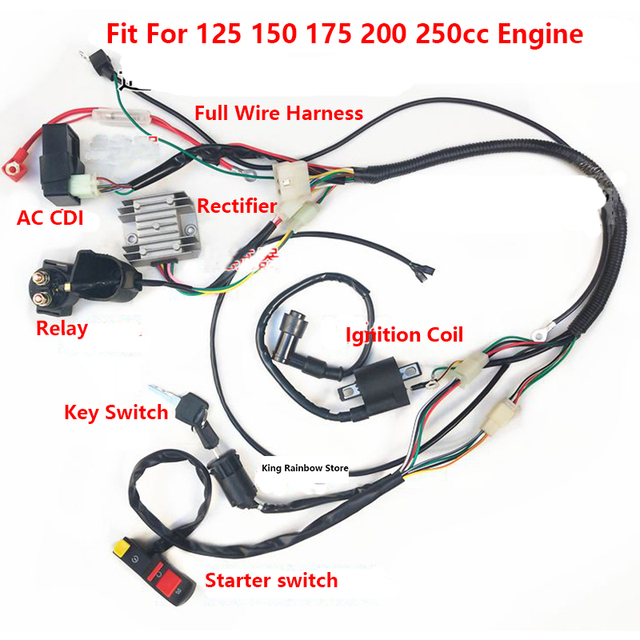 Kawasaki Bayou Wiring Harness - Wiring Diagram K9 on
