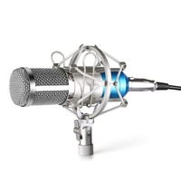 Neewer NW800 Microphone Set Including NW 800 Professional Condenser Microphone Shock Mount Foam Cap Microphone Power