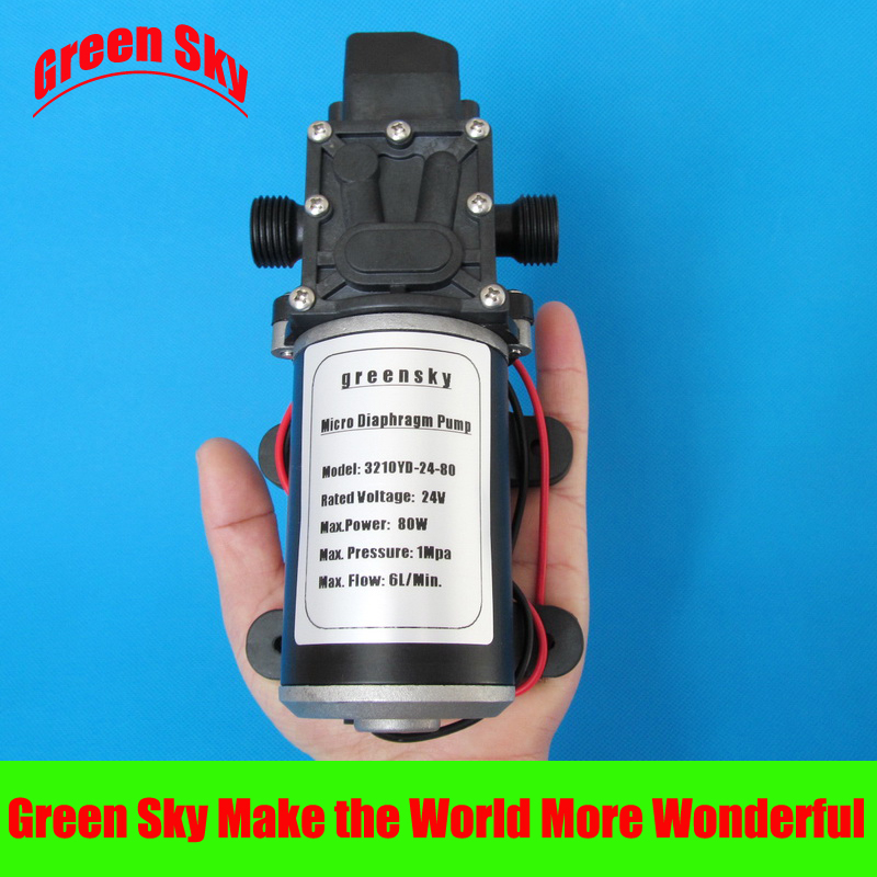 6L/Min 24V DC 80W automatic pressure switch type diaphragm pump 24v self-priming