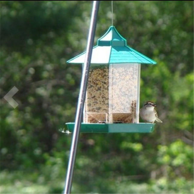 recipe feeding feeder formula birds hanging mix for inspiration hummingbird nectar unique