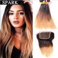 7A Ombre Lace Frontal Closure With Bundles Brazilian Virgin Hair With Closure 2/3/4 bundles With Closure Human Hair Wigs Rosa LY