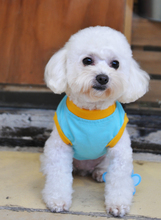 Cute Style Pet Dog Clothes
