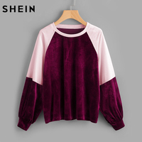 SHEIN Two Tone Raglan Sleeve Velvet Pullover New Women Sweatshirt Color Block Long Sleeve Casual Pullovers
