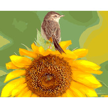 Sunflower Bird Animal DIY Digital Painting By Number Modern Wall Art Canvas Painting Christmas Unique Gift Room Decor 40x50cm(China)