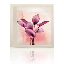 P flower,250W-A,Free shipping! warm wall,Infrared heater,carbon crystal heater panel,heater with picture, look beautiful on wall