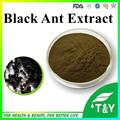 natural plant extract Ant Extract/Chinese black ants powder 1000g/lot