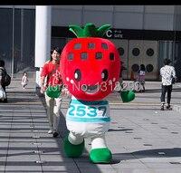 mascot Kawaii Strawberry Head mascot costume fancy dress custom fancy costume cosplay theme mascotte carnival costume kits