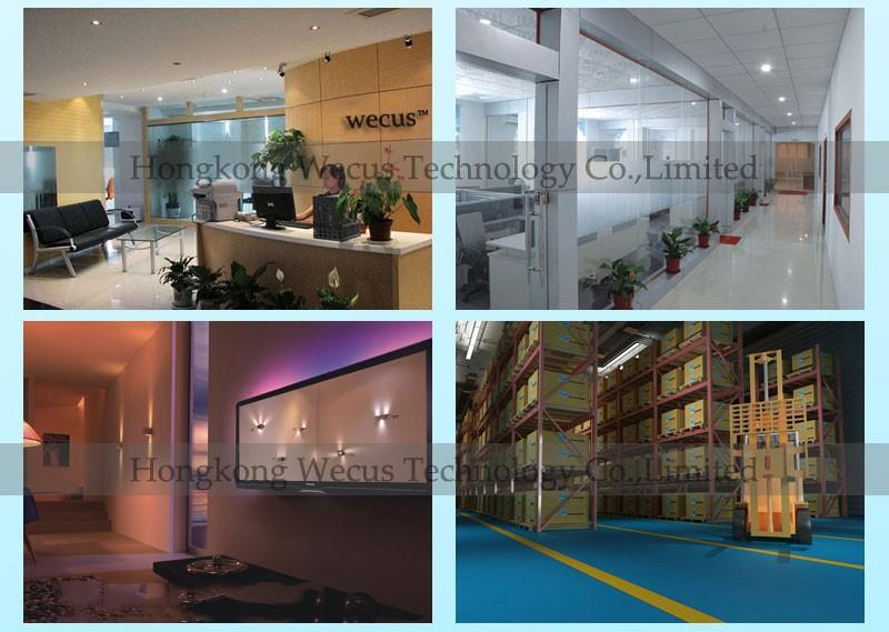 wecus company (3)