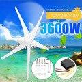 3600W Generatore di Energia Eolica Turbine 12/24/48V 3/5 Vento Lame Opzione Con Impermeabile Regolatore di Carica adatta per la Casa O in Campeggio