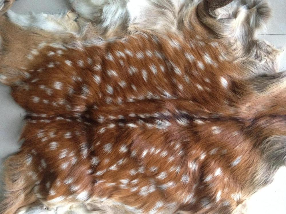 ... Whole Deer Skin Rug Fur Fur Wall Tapestry Sofa Cushion Vehicle Season  Clearance Processing ...