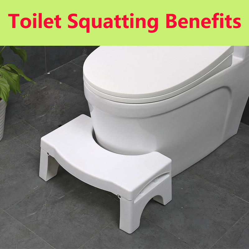 Bathroom loo pee piss poop potty squat tinkle toilet wc