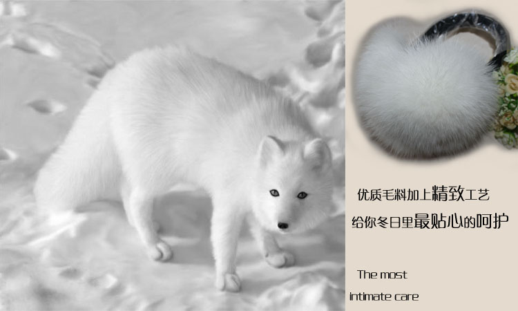 Fur Leather Fox Sheng 10