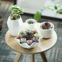 אספקת גן פרחי גן שולחן עבודה בבית במשרד אדניות עציצים potss סגנונות פשוט מודרניים דקורטיבי צמח ירוק קרמיקה לבנה