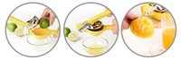 High Quality Stainless Steel Juicer Manual Juicer Orange Juice Ginger Juice Fruit Squeezer