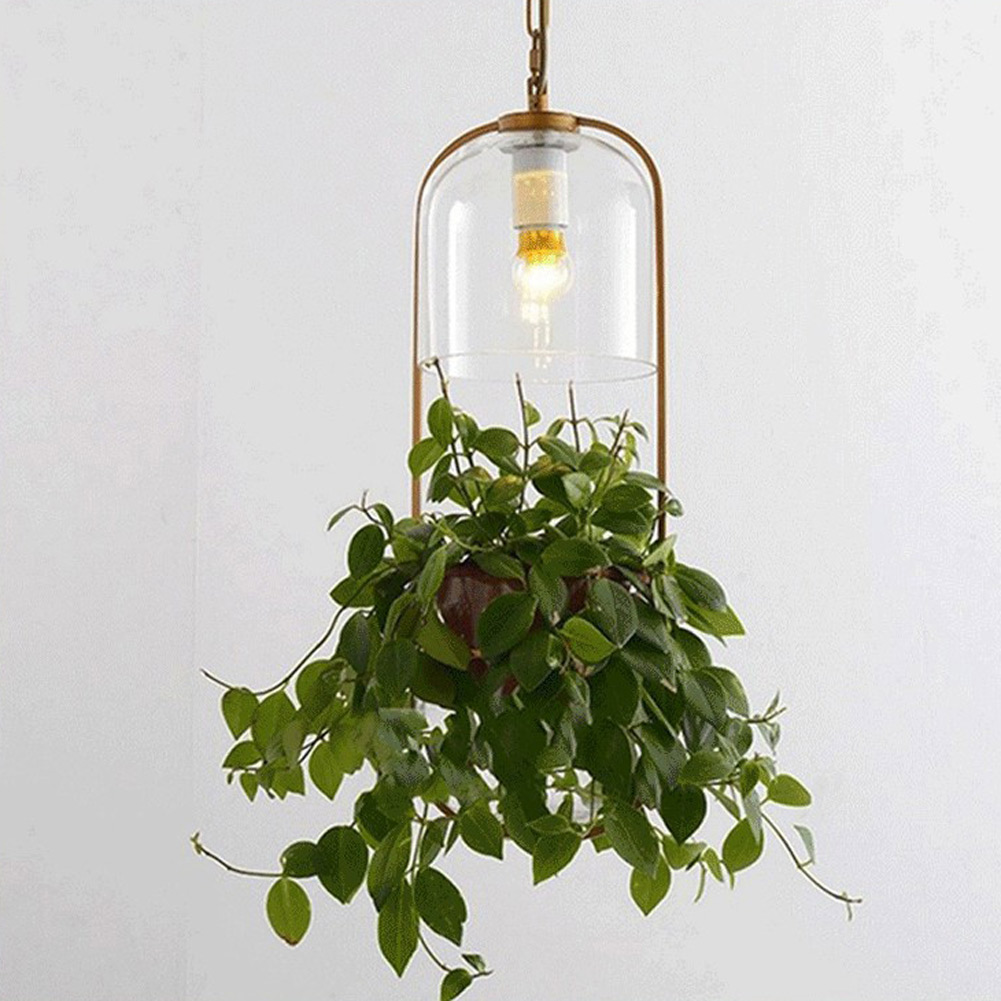 Pastoral Chandelier Modern Minimalist Creative Ecological Glass Plant Chandelier Plant Droplight for home Kitchen Bedroom Lamp ecological footprinting
