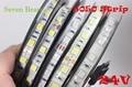 IP20/65 DC24V led strip 5050 24v SMD 5M 300led 60led/M white/Warm white/RGB flexible led ribbon waterproof  indoor decoartion