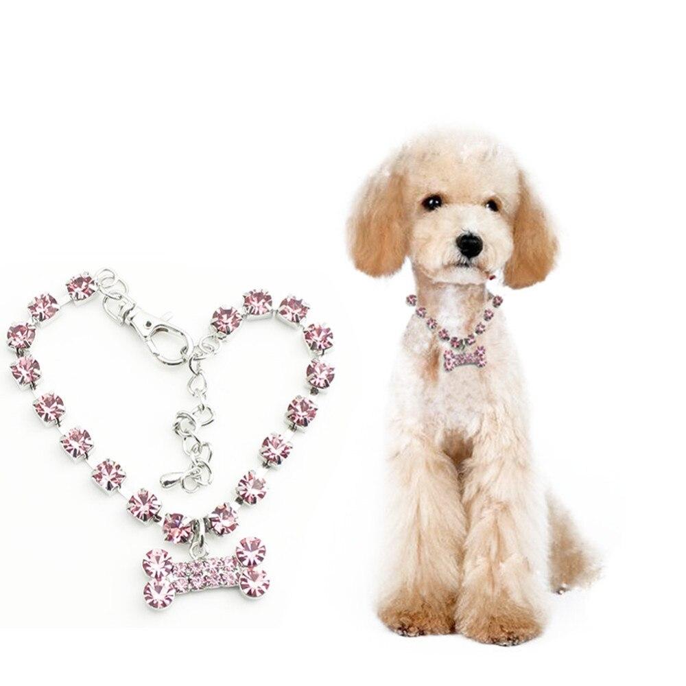 Huesos de Cristal de Acero inoxidable Para Mascotas Cachorro Collar de Acero Ino