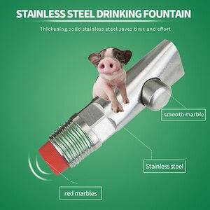 Image 5 - 10pcs אנטי להתיז חזיר אוטומטי מים פטמה שתיין נירוסטה עם מסנן חזיר מים מזין