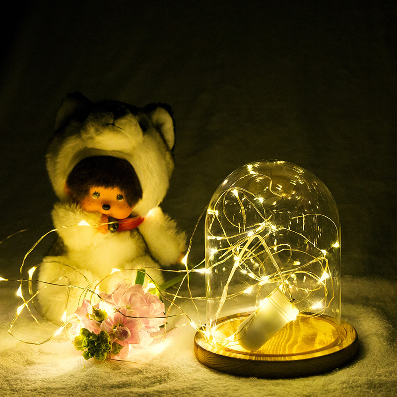 2M 3M 5M Koppar Led Fairy String Lights CR2032 Button Batteri - Festlig belysning - Foto 6